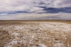 Feindliche Wüste nahe Dayet Srji Salt Lake in Marokko lizenzfreie stockfotografie