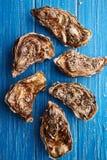 Feine Austern de Claire auf blauem Holztisch stockfoto