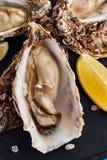 Feine Austern de Claire mit Zitronenscheiben stockfotografie