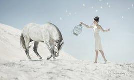Feiner Schuss der sinnlichen Dame mit dem Pferd Lizenzfreies Stockfoto