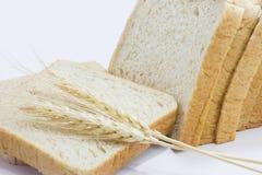 Feiner Vollweizen breads& Weizen Lizenzfreie Stockbilder