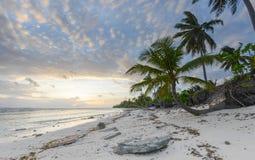 Feiner weißer Sand, Palmen und Türkiswasser Lizenzfreie Stockfotos