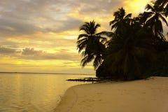 Feiner weißer Sand, Palmen und Türkiswasser lizenzfreie stockbilder