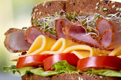 Feinkostgeschäftfleischsandwich mit Truthahn stockfotografie