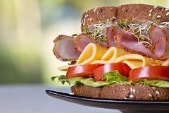 Feinkostgeschäftfleischsandwich mit Truthahn stockfotos
