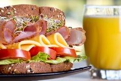 Feinkostgeschäftfleischsandwich mit Truthahn stockfoto