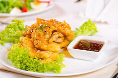 Feinschmecker Fried Chicken Meat mit heißem Bad lizenzfreies stockbild