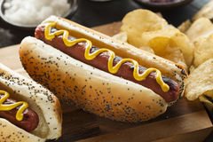 Feinschmecker grillte alle Rindfleisch Hots-Hunde stockfotos