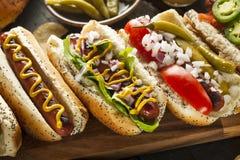 Feinschmecker grillte alle Rindfleisch Hots-Hunde stockfoto