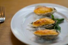 Feinschmeckerische Austern Stockbild