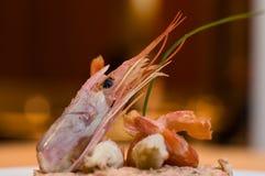 Feinschmeckerische essbare Meerestiere. lizenzfreies stockfoto