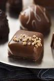 Feinschmeckerische fantastische dunkle Schokoladen-Trüffel-Süßigkeit Stockbilder