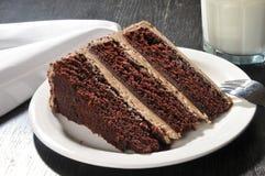 Feinschmeckerischer Schokoladenkuchen mit Milch Stockbild