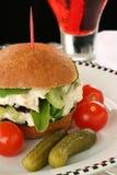 Feinschmeckerisches Mittagessen Lizenzfreie Stockfotos