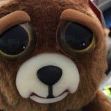 Feisty. Cute Teddy bear Royalty Free Stock Image