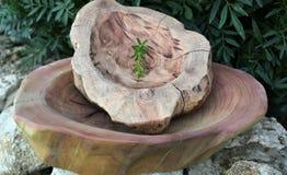 Feito a mão, carpintaria, textura e materiais, pratos e utensílios naturais do agregado familiar da madeira, fotos de stock royalty free
