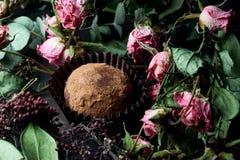Feito pelo alimento saudável dos doces crus das mãos Imagem de Stock Royalty Free