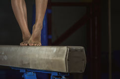 Feixe de equilíbrio novo da menina da ginasta Imagem de Stock