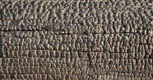 Feixe de madeira carbonizado fotos de stock
