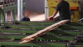 Feixe de madeira no transporte, processamento de madeira em uma f?brica de woodworking, interior industrial em uma serra??o vídeos de arquivo
