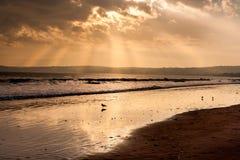 Feixe luminoso na praia Imagem de Stock Royalty Free