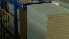 Feixes de madeira para a produção de painéis de sanduíche video estoque
