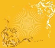 Feixes de Sun ilustração do vetor