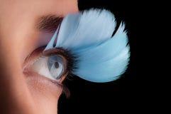 Fejka ögonfranser Arkivfoto