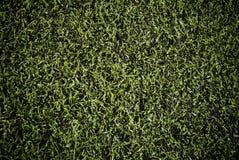 fejka använda fältgrässportar Arkivbilder