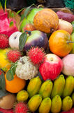 fejka frukt Royaltyfri Fotografi