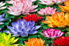 Fejka Lotus blommor arkivfoto