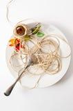 fejka spagetti Arkivfoton
