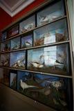 Felbriggzaal, Nationaal Vertrouwen, Norfolk, het UK Stock Fotografie