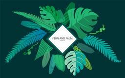 Felce e foglie di palma per la vostra progettazione Tutti gli oggetti sono raggruppati S royalty illustrazione gratis
