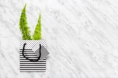 Felce verde in una borsa a strisce del regalo su fondo di marmo Immagine Stock