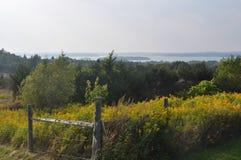 Feld über See in Kanada Stockbilder