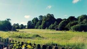 Feld-Überblick Wiltshire Lizenzfreies Stockbild
