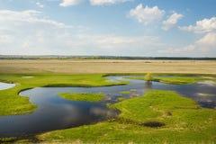Feld überschwemmt mit Wasser lizenzfreie stockbilder