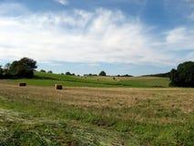 Feld in Ain, Frankreich lizenzfreies stockbild