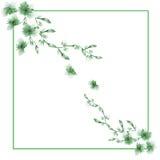 Feld Aquarell mit zwei Eckverzierungen von wilden grünen Blumen auf einem weißen Hintergrund Lizenzfreie Stockbilder