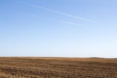 Feld auf einem Hintergrund des Himmels Stockfotos