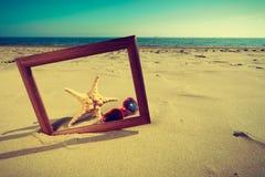 Feld auf Sand auf dem Strand Stockbilder