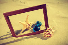 Feld auf Sand auf dem Strand Lizenzfreie Stockbilder