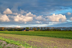 Feld, Bauernhaus und blauer Himmel Lizenzfreies Stockfoto