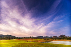 Feld-Berg und Himmel Stockfoto
