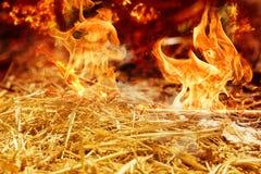 Feld brennt im Sommer durch Dürre Lizenzfreie Stockfotos