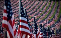 Feld der amerikanischen Flagge Stockfoto