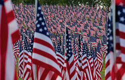 Feld der amerikanischen Flagge Stockfotos