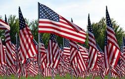 Feld der amerikanischen Flagge Lizenzfreie Stockfotografie