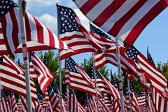Feld der amerikanischen Flagge Stockfotografie